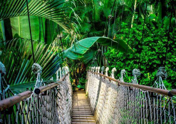 Auf der Hängebrücke springen - eine solche Brücke würde super funktionieren.