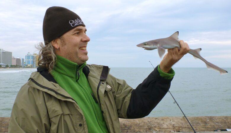 Haie sind weitaus ungefährlicher als Filme uns weismachen wollen. Einen Hai halten ist daher ungefährlich.