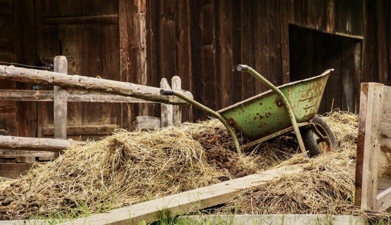 In einem Stall übernachten, auf Strohballen. Eine Top Bucket List Idee.