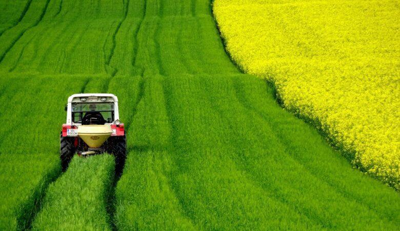 Feldarbeit hat auch beim mit einem Traktor fahren etwas beruhigendes.