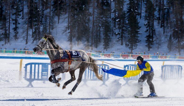 Sieht nicht nur nach Action aus, es ist wild und spaßig: Skijöring.